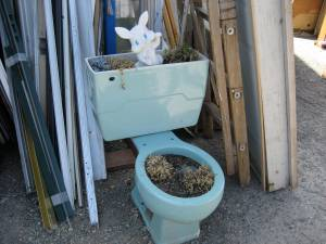 I always wanted an Easter themed toilet planter!