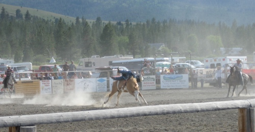 Side saddle for Cowboys...look close, you can see him biting the dust