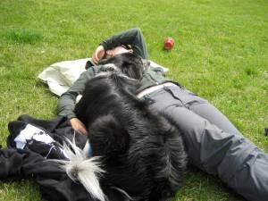 Mo and Zorra nap time